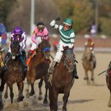 Accelerate Does Just That to Claim the $6million Breeders' Cup