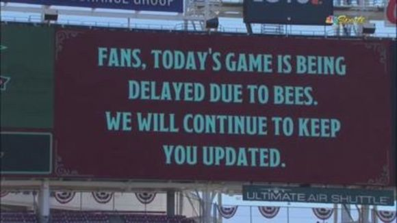 MLB Remains Under Siege from Those Damn Bees