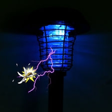 The Mets Must Be MLB's Ultraviolet Bug Zapper