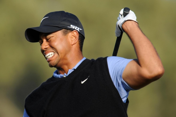 Tiger's Lost Roar on Display