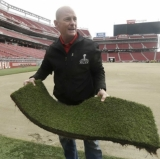 There will be no shortage of grass at the Super Bowl.