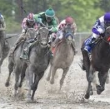 Pre-Preakness Freak Out Precedes Exaggerator's Mudfest